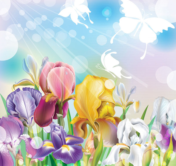 Color of IRIS flowers Vector EPS