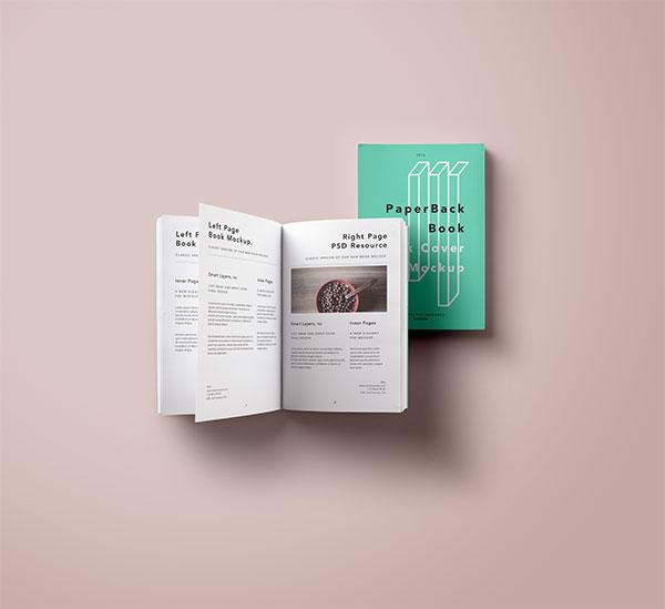 Prototype of books PSD